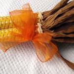 Corn Yellow with Orange Ribbon 103